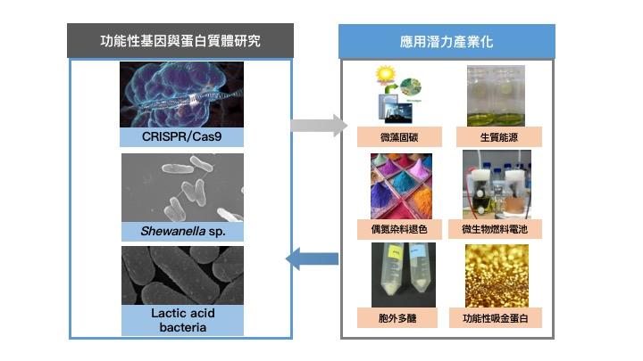功能性基因與蛋白質體學實驗室-化工吳意珣-2016-01